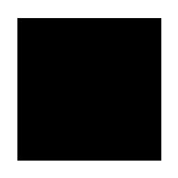 icon_torque